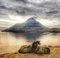 Joseph, Green Mountain, Faroe Islands, Archipelago, Mount Rainier, House Colors, Iceland, To Go, Mountains