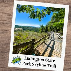 Ludington State Park MI - Hike the Incredible Skyline Trail! Best Things to do at Ludington State Park: Hiking, Camping and Kayaking! . Rent Kayaks or Watercraft at Ludington State Park. Check out the beach! . Best State Park in Michigan, perfect for kayaking, camping, bird watching, hiking and sight seeing! . . #ludingtonmichigan #ludingtonmichiganthingstodo #ludingtonstatepark #ludington #ludingtonstateparkmichigan #ludingtonmi #michiganstateparks Michigan State Parks, Michigan Vacations, Michigan Travel, Ludington Michigan, Ludington State Park, Kayaks, Water Crafts, Go Camping, Bird Watching