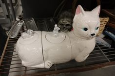 """from MSU surplus: """"This cookie jar set redefines the relationship between functional and adorable"""""""