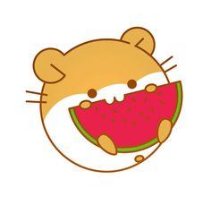 hamster & watermelon
