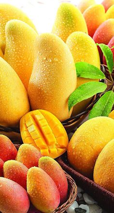 Mango relative to the apple, pear, it is one of the less fruit we eat. But with the improvement of our living standards, mango also entered . Mango Fruit, Fruit Juice, Fruit And Veg, Fruits And Vegetables, Fresh Fruit, Vegetables List, Fruit Salad, Pineapple Juice, Mango Tree