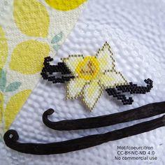 Petite fleur de vanille pour rester en été... #vanille #goussevanille #fleur #fleurdevanille #vanillebourbon #tahiti #jenfiledeperlesetjassume #perlesaddictanonymes #perlesaddict #jesuisunesquaw #miyuki #miyukibeads #brickstitch #diy #handmade #perlesandco #perlescorner #motifcoeurcitron