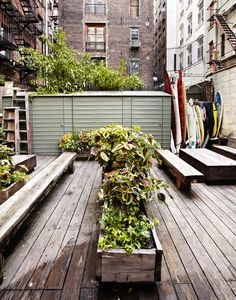 Their lush back patio is an oasis in the middle of Soho. People frequently come into the shop just to pick up a drink from the in-store coffee bar and to linger outside.