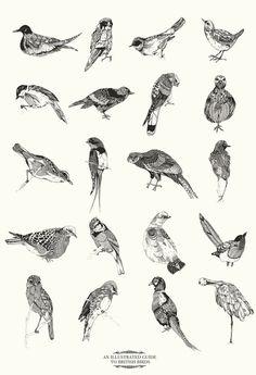 Chrysa Koukoura bird print @Celia Karpatkin