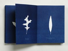 Book of Cyanotype leaves by Michael Sharp