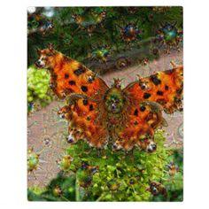 Traumgeschöpfe, Schmetterling, DeepDream Schautafeln