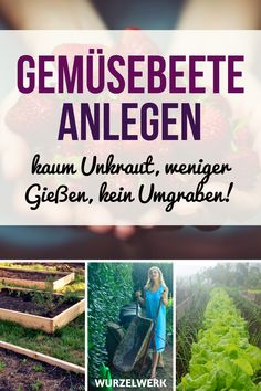 Gemüsegarten anlegen ohne Umgraben Create a vegetable garden without digging (and back pain)! How to create fertile vegetable beds quickly and easily and grow vegetables without much effort! Herb Garden Pallet, Herb Garden Design, Vegetable Garden Design, Backyard Garden Design, Vegetable Planters, Vegetable Bed, Vegetable Gardening, What To Plant When, Garden Sink