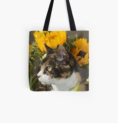 Tortoise Shell, Photo Art, Reusable Tote Bags, Cats, Artist, Design, Gatos, Artists, Cat
