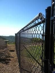Day 34 Coyote Proof Fence Coyote Rollers Dog Runs Dog