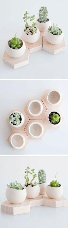 Succulent Cell Planter