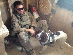 "Military Working Dog ""Dakota"" and handler. She is a english springer spaniel."