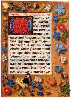 Hastings book of the hours - Papillons dans la peinture — Wikipédia