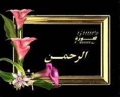 سورة الرحمن - أسطر