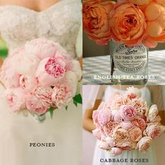 Want the look of seasonal peonies year-round? Cabbage roses and English tea roses are more affordable and available all year round, making them a great alternative for weddings and home décor! Wedding Flower Arrangements, Wedding Table Centerpieces, Flower Centerpieces, Wedding Bouquets, Centerpiece Ideas, Wedding Decorations, Petunias, Cabbage Rose Bouquet, Cabbage Roses