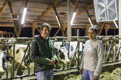 Landwirt Sven Klingemann und Journalistin und Verbraucherin beim Jetzt-reden-wir-Gespräch über Antibiotikaeinsatz im Milchviehbetrieb (Philipp von Ditfurth). Zu lesen in der FOOD & FARM: http://www.food-and-farm.com/