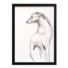 The Magnificent Hound UK limited edition print by Tanya Brett | Remodelista