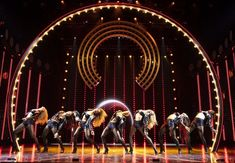 The new musical about the life and career of the entertainment icon is set to officially open December 3 at the Neil Simon Theatre. Neil Simon Theatre, The Cher Show, Musicals, Broadway Shows, It Cast, Boards, Classic, Planks, Derby