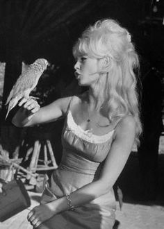 brigitte bardot with african grey parrot Bridgitte Bardot, Bardot Animal, Jacques Charrier, Divas, And God Created Woman, Actrices Hollywood, French Actress, Portraits, Classic Beauty