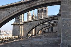 Arbotantes vistos desde la azotea de la Catedral de Sevilla