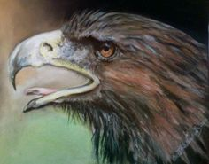 My Scorpio Totem....the mighty Eagle!