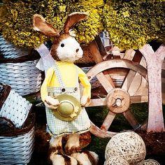 #MandarinaHome #Mandarina #árbol #conejo #cesta #blanca #mimbre #bola #cesped #carro #madera #decoración #regalo