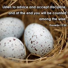 Listen to counsel and receive instruction, That you may be wise in your latter days. [Proverbs 19:20]