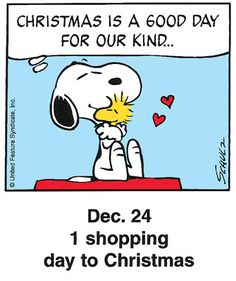 """Christmas is a good day for our kind..."" #yankinaustralia #peanuts"