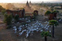 Bagan. by Oleg Gudkov