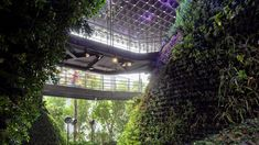 """Architecture studio WOHA has created a plant-filled pavilion covered in a """"three-dimensional garden"""" at Dubai Expo 2020."""
