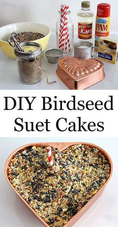 Learn how to make DIY Birdseed Suet Cakes for your backyard birds. They're also excellent holiday hostess and teacher gifts that the kids can help with! Suet Recipe, Funny Bird, Bird Suet, Suet Cakes, Bird Feeder Craft, Bird Seed Ornaments, Diy Ornaments, Homemade Bird Feeders, Bird House Kits