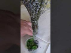 Țânțarii vor sta departe de casa dumneavoastră.Rețetă naturistă . - YouTube Glass Vase, Avocado, Youtube, Decor, Insects, Decoration, Lawyer, Decorating, Youtubers