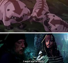 Legend of Korra: That's actually what I said.