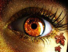 "Autumn by *MiaJitaru ""…and my eyes no longer gaze the same on the face of the world."" ― Jean Hatzfeld"
