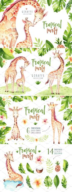 This set of high quality hand painted #Giraffe collection. #Tropical party! ( #vector #watercolor #illustrations #clipart #art )