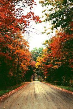 Autumn's approach