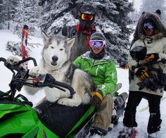 My #WCW goes out to these frosty baes in the backcountry last week. #sleddog by loki_the_wolfdog