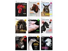 Guess Our Winter Issue's Cover Animal For A Chance To Win Some Sweet Prizes! - http://modernfarmer.com/2015/11/modern-farmer-winter-cover-contest/?utm_source=PN&utm_medium=Pinterest&utm_campaign=SNAP%2Bfrom%2BModern+Farmer