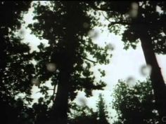 It's Gonna Rain! - Bonnie Pink (Samurai X)