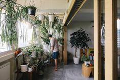 5 Refreshing Homes in Singapore that Go Big on Greenery Corner Reading Nooks, Cosy Corner, Wooden Sliding Doors, Window Seat Cushions, Renovation Budget, Single Bedroom, Architect Design, Bay Window, Design Firms