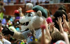 Pappy the Valley Cat, Tri-City ValleyCats mascot; Class A-Short Season, New York-Penn League. Southpaw's father.