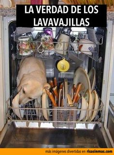 La verdad de los lavavajillas.