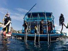 Liveaboard-diving-Dolphin-Queen-dive-platform