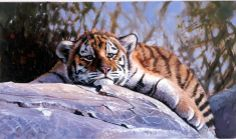 Tiger cub painting by Pip McGarry