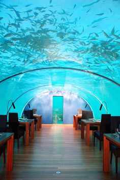 Ithaa Underwater Restaurant - My Maldives