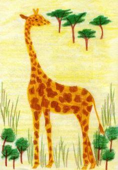 Waldorf ~ 4th grade ~ Human & Animal ~ Giraffe ~ main lesson book