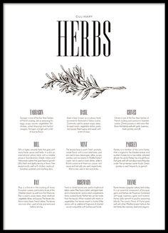 Mooie en trendy poster voor de keuken met print van kruiden. Bekijk ook onze Herbs poster met illustraties, mooi om samen te combineren. Richt de keuken in met een postercollage met onze keukenposters en prints. www.desenio.nl