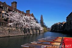 The River Cam, Magdalene College, Cambridge, England, photo