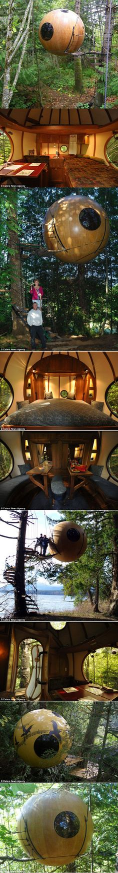 A Canadian man has built the world's first spherical treehouse hotel, suspending his guests 15ft in the air. Guests at Free Spirit Spheres sleep hanging in the treetops in the west coast rainforest of Vancouver Island, British Columbia, rocked to sleep by the wind. Inventor Tom Chudleigh has devoted his life to handcrafting the spheres from wood and fibreglass,  which each cost more than £100,000 to make.