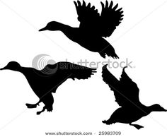 Find Duck Silhouette Collection stock images in HD and millions of other royalty-free stock photos, illustrations and vectors in the Shutterstock collection. Duck Silhouette, Silhouette Clip Art, Bird Template, Alien Concept Art, Fabric Stamping, Wood Burning Patterns, Stencil Templates, Vector Art, Illustration Art
