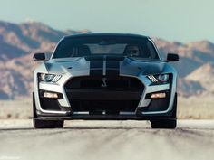 The Shelby GT 500 Ford Mustang was built to be Fords most powerful Ford Mustang Shelby Gt500, Ford Gt500, Ford Mustang Bullitt, Mustang Cars, Ford Mustangs, Style Moto, Shelby Gt 500, Dodge Challenger Srt Hellcat, Motorcycle Types